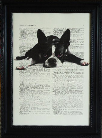 boston terrier book print