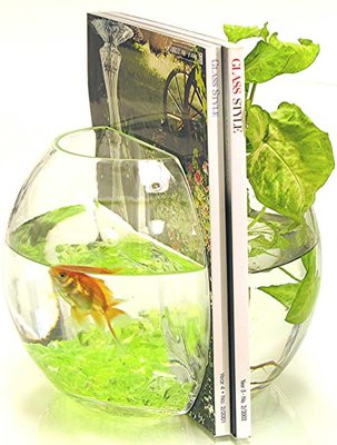 fishbowl-bookends