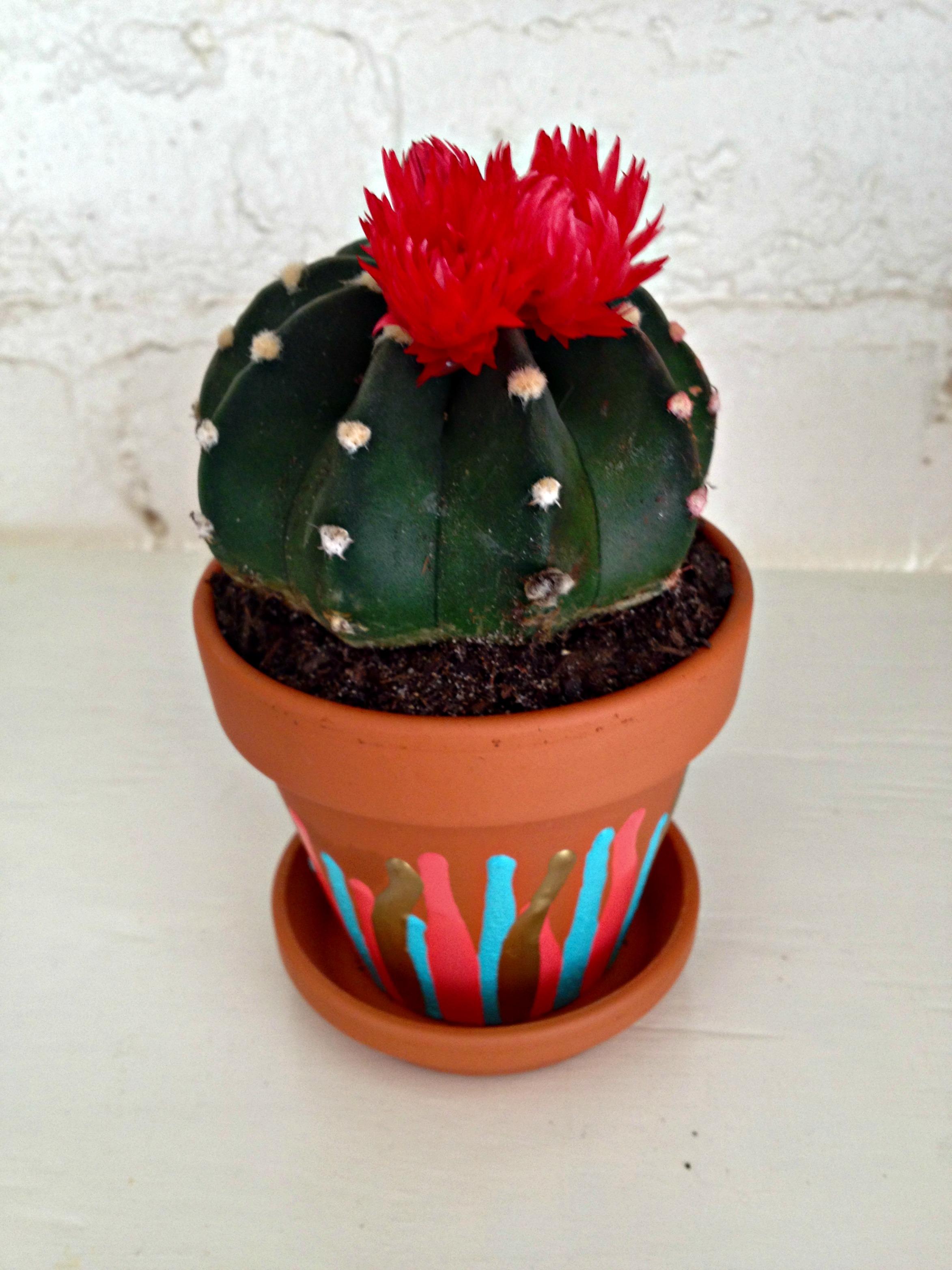 Terracotta Clay Flower Pots