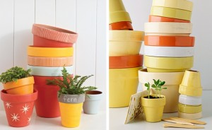 Solid Painted Terra Cotta Planters